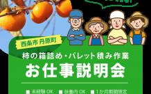 柿の箱詰め・パレット積み作業のお仕事説明会